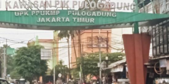 Digitalisasi UMKM Indonesia, Bukan Sunah tetapi Wajib